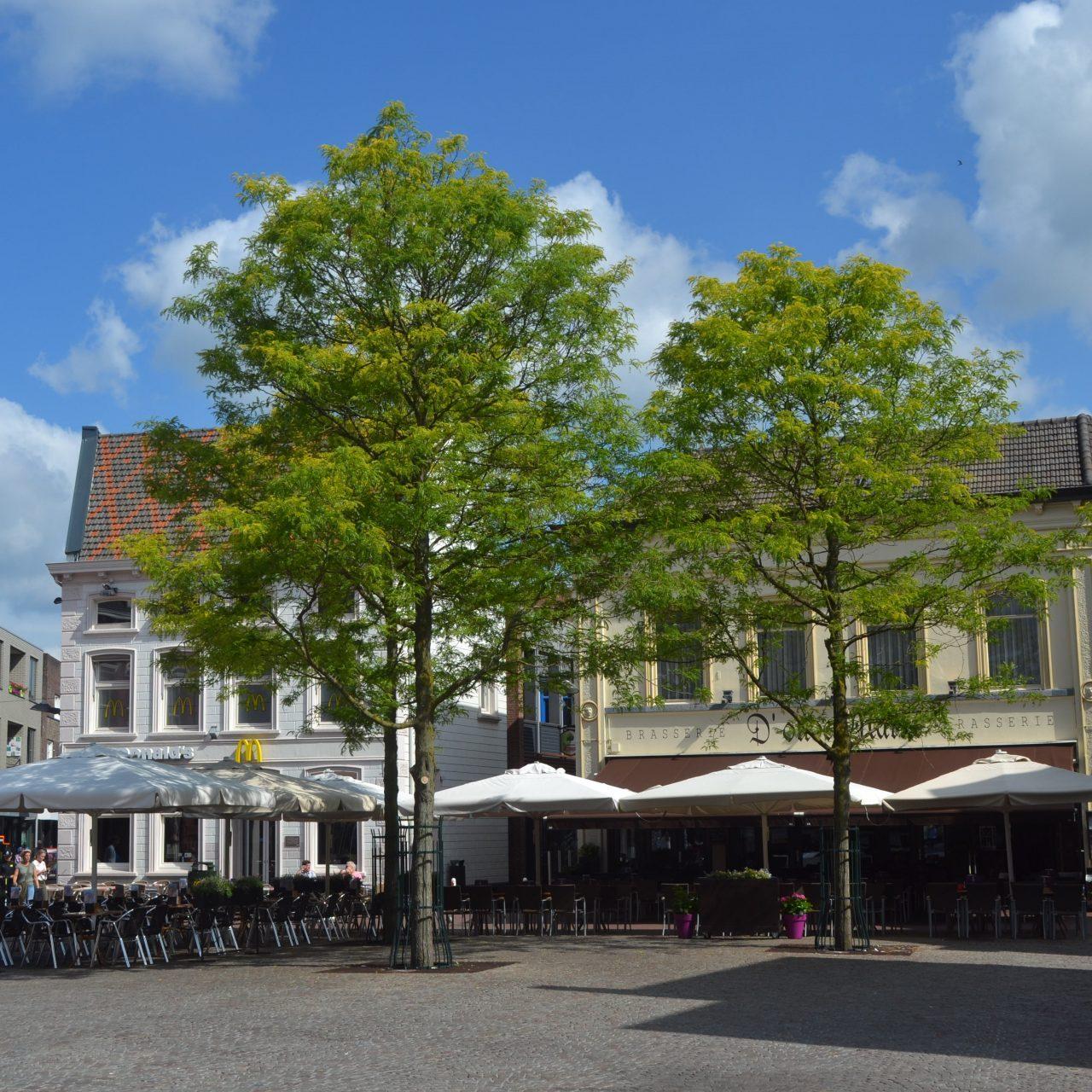 2018-6-14 Weert Oude Markt (8)